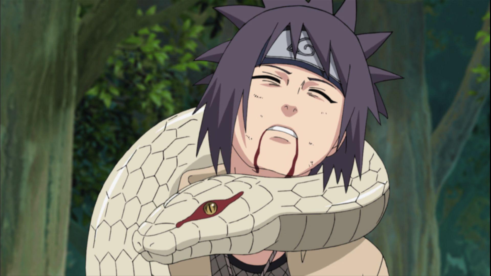 Watch Naruto: Shippuden on Adult Swim